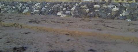 Wave cut sand cliff